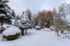 雪盖的美丽的冬景花园 免版税库存照片