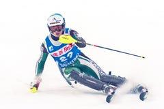 滑雪竞赛的未认出的参加者 免版税图库摄影