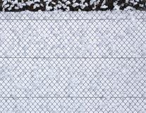 雪篱芭 免版税图库摄影