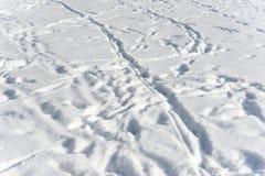雪纹理和脚印在雪 库存图片