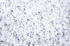 雪纹理背景 库存图片