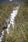滑雪者和挡雪板滑雪电缆车的 免版税图库摄影