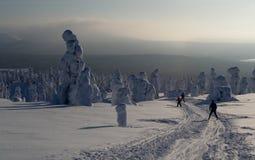滑雪者在拉普兰 免版税库存照片