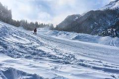 滑雪者在班斯科 免版税库存照片