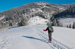 滑雪者起来上升 图库摄影