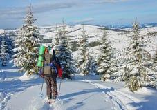 滑雪者起来上升 库存图片