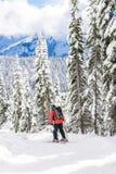 滑雪者滑雪在晴天, mt更加多雨的国家公园,华盛顿,美国 免版税库存照片