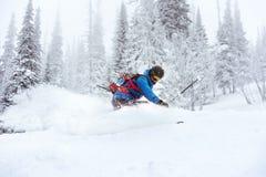 滑雪者滑雪场地外的freeride滑雪森林 库存图片