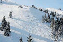 滑雪胜地Jahorina 图库摄影