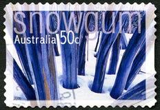 雪胶澳大利亚邮票 免版税库存照片