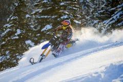 雪自行车转换成套工具在山的冬天森林里 免版税库存照片