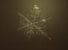 雪花接近在空气在黄色背景 图库摄影