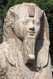 雪花石膏狮身人面象的顶头部分阿蒙Ofis第2在孟菲斯,埃及 库存照片