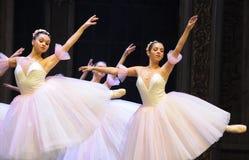 雪花神仙第二个行动第二领域糖果王国-芭蕾胡桃钳 免版税库存图片