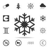 雪花象 详细的套网象 优质质量图形设计 其中一个网站的汇集象,网络设计, m 库存图片