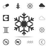 雪花象 详细的套网象 优质质量图形设计 其中一个网站的汇集象,网络设计, m 免版税库存图片