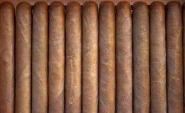 雪茄丘吉尔大小 库存照片