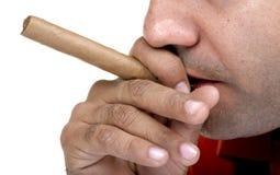 雪茄抽烟 免版税库存照片