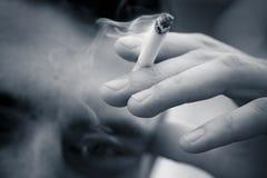 雪茄抽烟 免版税库存图片