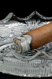 雪茄末端点燃了 免版税库存照片