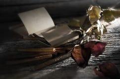 雪茄烘干玫瑰色 库存图片