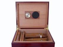 雪茄盒查出的mahagony 免版税图库摄影