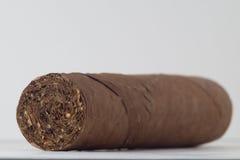 雪茄 免版税库存照片