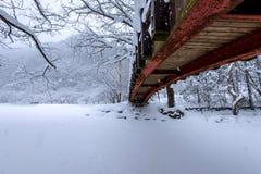 雪落在公园的和一座走的桥梁在冬天 免版税库存照片