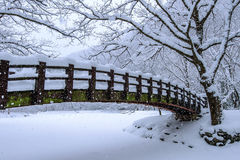 雪落在公园的和一座走的桥梁在冬天 免版税图库摄影