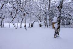 雪落在公园的和一座走的桥梁在冬天 图库摄影