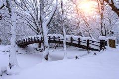 雪落在公园的和一座走的桥梁在冬天 库存图片