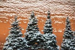 雪蜷缩了杉树和红砖墙壁 图库摄影