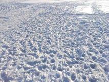 雪表面背景 库存图片