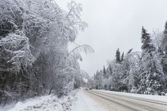 雪被清扫的路 33c 1月横向俄国温度ural冬天 冻森林,俄罗斯 免版税库存照片