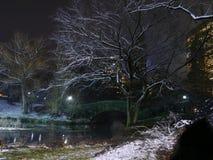 雪被洒的中央公园在一个纽约冬天 免版税图库摄影