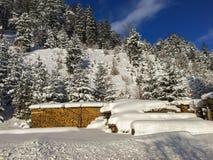 雪覆盖物堆柴火、日志和多目的木头PR 免版税图库摄影