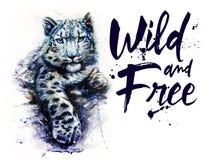 雪豹水彩绘画,动物掠食性动物,野生生物绘画 免版税库存照片
