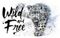 雪豹狂放和自由水彩绘画,动物掠食性动物, T恤杉,印刷品,冬天,加州国王山,狂放的设计  免版税库存照片