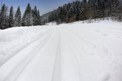 滑雪足迹,在雪的轨道 免版税库存图片
