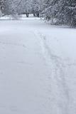 雪足迹,道路 冬天妙境在森林里 免版税库存照片