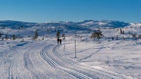 滑雪跟踪 免版税库存图片