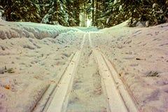 滑雪轨道在森林里 免版税库存照片