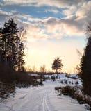 雪道在冷的冬天村庄 库存图片