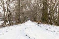 雪道,冬天 免版税图库摄影
