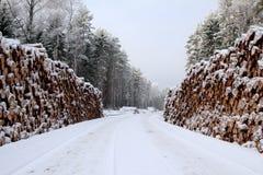 雪道,在森林公路, persp的两边日志堆 免版税库存照片