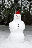 雪雪人风暴 库存图片
