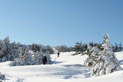滑雪雪体育运动跟踪冬天 免版税库存照片