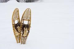 雪鞋子 库存照片