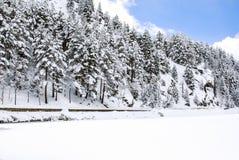 雪风景在冬天 免版税库存照片