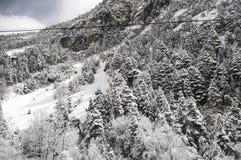 雪风景在冬天 库存照片